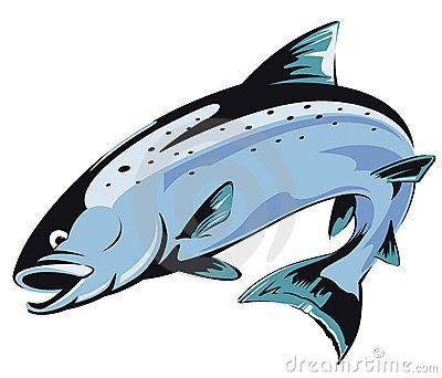 vector clip art of salmon fish jumping salmon fish in retro rh pinterest com salmon clipart gif salmon clip art free