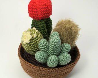 Crochet Cactus Pattern Best Of Best 25 Crochet Cactus Ideas On ... | 270x340