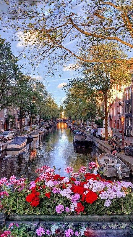 290 Ideas De Holanda En 2021 Holanda Paisajes Amsterdam