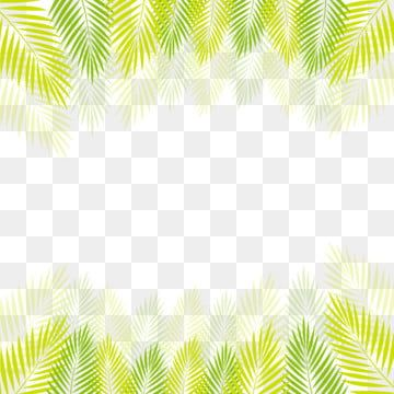 Tropical Palm Leaves Png Png Free Download Palm Tropical Leaves Leaves Png And Vector With Transparent Background For Free Download In 2020 Watercolor Flower Background Spring Flowers Background Tropical Leaves