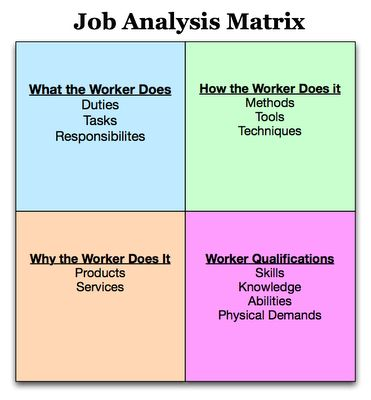 Infographic Job Analysis Job Analysis Forms Pinterest Job - job analysis