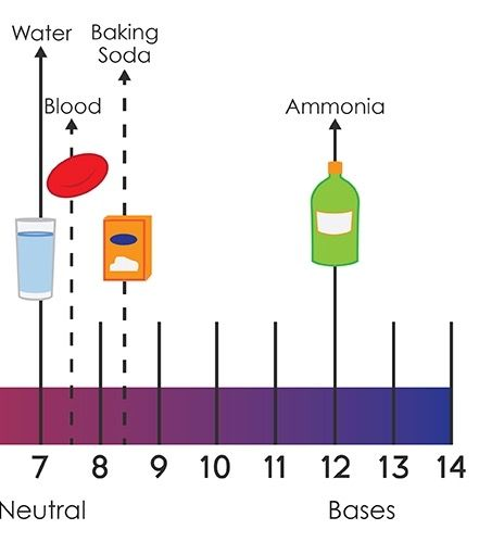 The numbers 8-14 on the pH scale indicate an alkaline solution - sample urine color chart