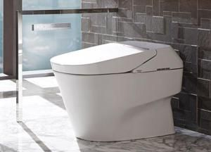 5 Japanese Rituals You Should Adopt In Your Bathroom Use A Bidet