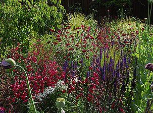 Garden Designer London & Landscape Designers London - Contemporary Garden Designer - Josh Ward Garden Design - London, UK