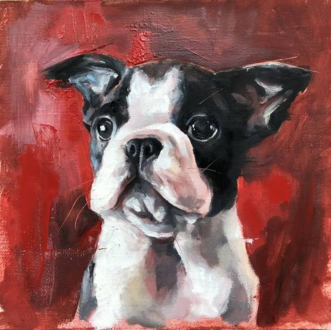 Original Art Oil Painting, measuring: 20W x 20H x 1D cm, by: Katya M (_k8art_) (Russia). Styles: Realism, Expressionism, Portraiture. Subject: Dogs. Keywords: Animalportrait, Frenchy, Dogs, Dogportrait, Frenchbulldog, Dogoiloncanvas, Dogspuppy, Puppy, Dog. This Oil Painting is one of a kind and once sold will no longer be available to purchase. Buy art at Saatchi Art.