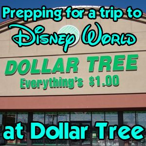 Prepping for a Disney trip at The Dollar Tree