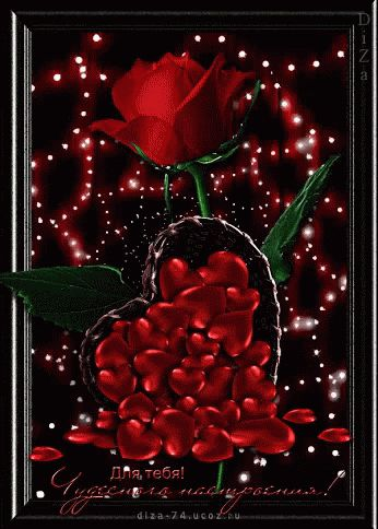 Red Roses GIF - Red Roses Animation - Discover & Share GIFs