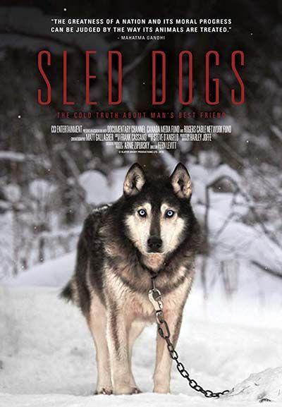 20 Dog Documentaries On Netflix And Amazon Dog Documentary Dog
