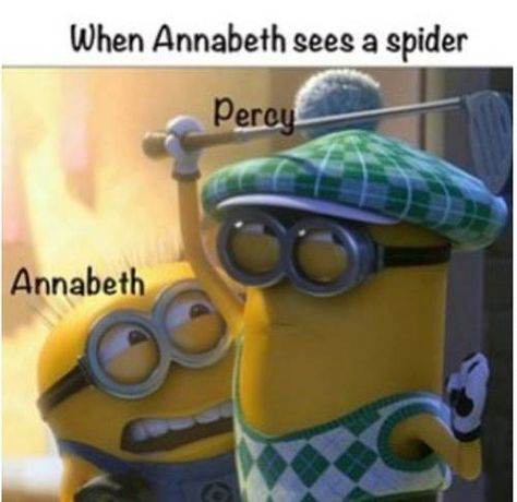 Percy Jackson, Despicable Me. I am Annabeth, everyone else on the planet can be percy :) Happy Anniversary Percabeth! Percy Jackson Memes, Percy Jackson Books, Percy Jackson Fandom, Magnus Chase, Percy And Annabeth, Annabeth Chase, Kermit, The Blue Boy, Oncle Rick
