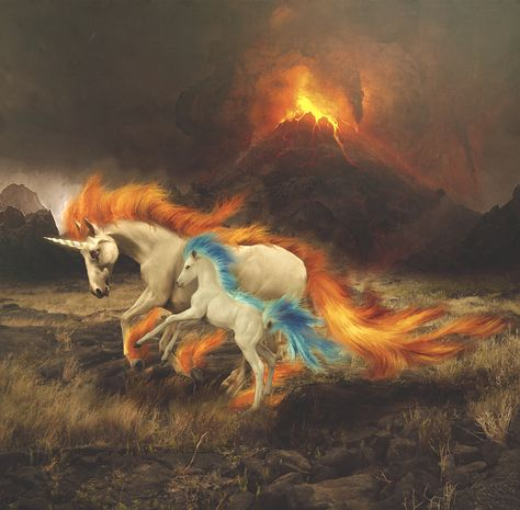 Rapidash and Ponyta by ~Amouranth on deviantART