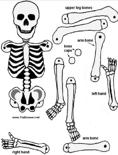 Free Skeleton Templates | Skeleton Printable Free Download Template Holidays Halloween