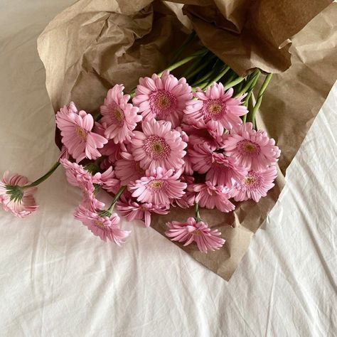My Flower, Purple Flowers, Pretty In Pink, Beautiful Flowers, Flower Aesthetic, Pink Aesthetic, No Bad Days, No Rain, Mode Inspiration