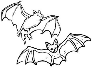 Kids Coloring Pages Bat Coloring Pages Animal Coloring Pages