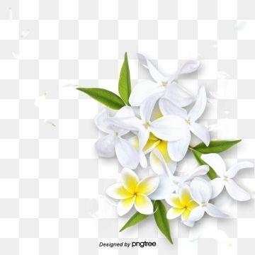 Cartoon White Flower Green Leaf Element Flower Clipart White Flower Png Flower Clipart Png