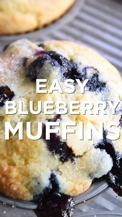 Easy Blueberry Muffins, Blue Berry Muffins, Mini Muffins, Blueberry Cheesecake, Blueberry Cake, Easy Blueberry Desserts, Easy Breakfast Muffins, Homemade Muffins, Easy To Make Desserts