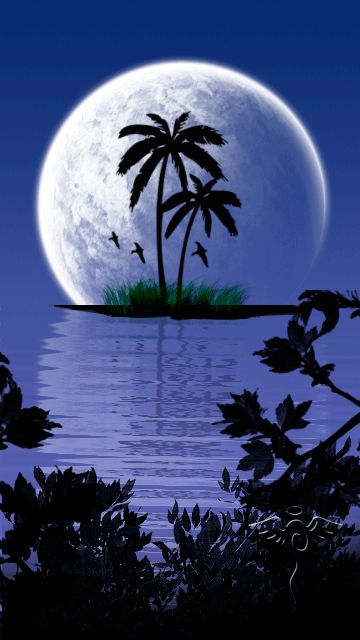But split in two triangle yet somehow fully incorporating how big the moon is in this.. love the palm trees