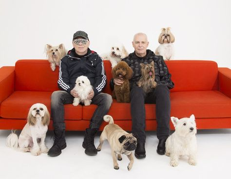 Pet Shop Boys Pet Shop Boys Boy Dog Pets
