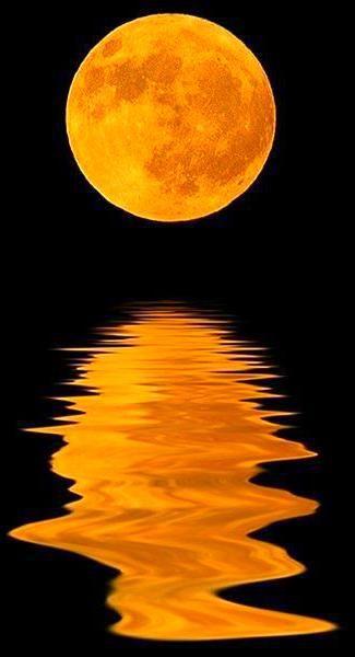 My Favorite Pins Moon Photos Moon Photo