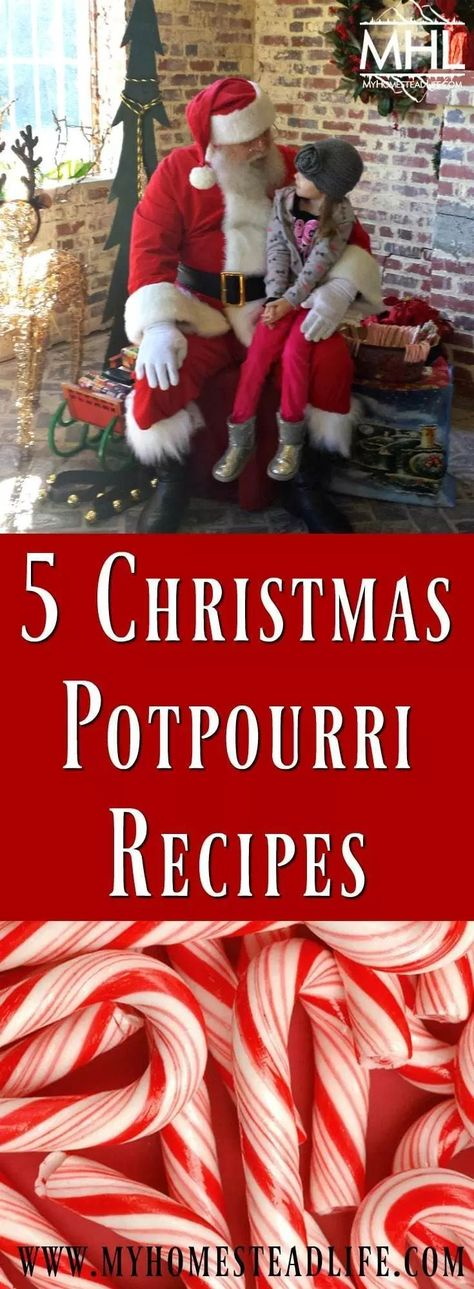 5 Christmas Potpourri Recipes: The wonderful smells of Christmas. These make awesome homemade, inexpensive Christmas gifts from the homestead. #christmasgifts #homemadeChristmas - My Homestead Life