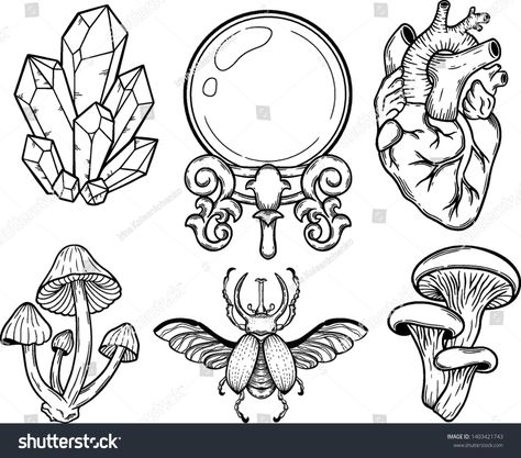 Set Mystical Elements Line Art Vector Stock Vector (Royalty Free) 1403421743 Crystal Ball Tattoo, Tattoo Drawings, Art Drawings, Crystal Drawing, Mushroom Drawing, Line Art Vector, Ball Drawing, Pagan Witchcraft, Halloween Drawings