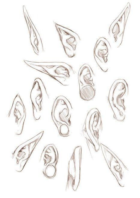 Ear Drawing Reference Zeichnen Von Referenzen Und Ressourcen Spaten Es Face Drawing Drawing People Drawing Reference Art Reference