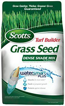 Got Sandy Soil Know The Best Grass Seeds For Sandy Soil Turf Builder Best Grass Seed Grass Seed