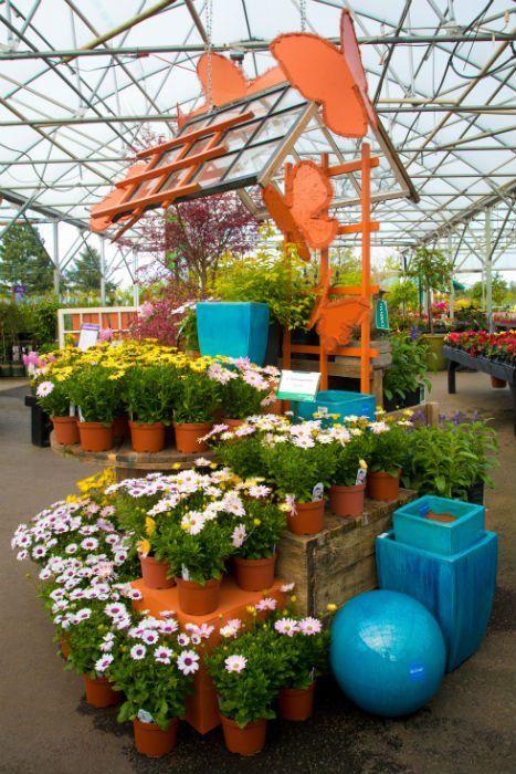 Six Displays Shine Bright Garden Center Displays Garden Center