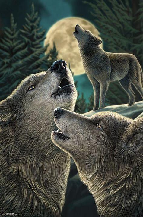 Lisa Parker Poster Wolf Song