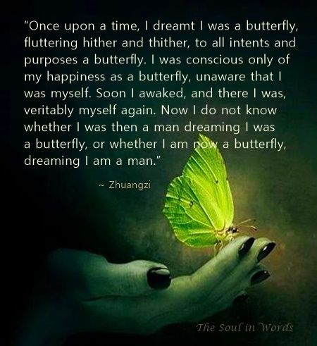 Image result for chuang tzu's butterfly dream