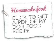What does it mean when a dog puts both paws on you when you are homemade dog food recipe forumfinder Gallery