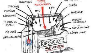 Resultat De Recherche D Images Pour Kinesiologie Humour Humour Quantique