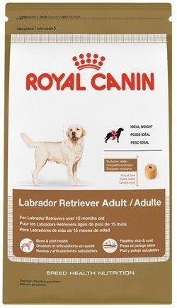 Best Dog Food For Labradors Dry Dog Food Dog Food Recipes Best