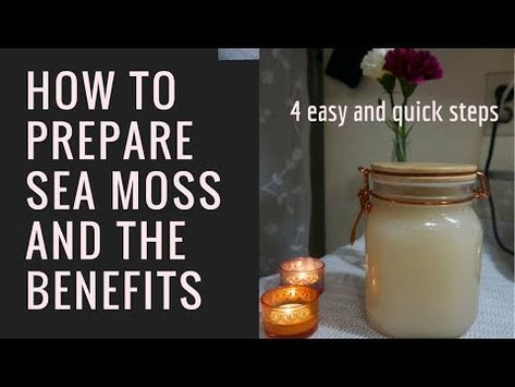 4 Easy And Quick Steps How To Prepare Sea Moss And The Benefits Youtube Sea Moss Seamoss Benefits Moss