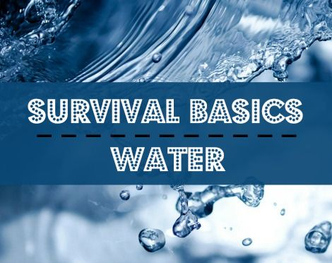 survival #preparedness #quotes  - fresh apprendre blueprint ark