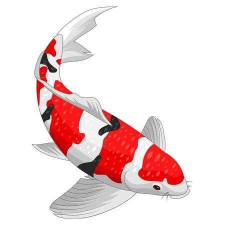 Red And Gold Koi Fish Design Elements Koi Fish Designs Koi Art Koi Fish