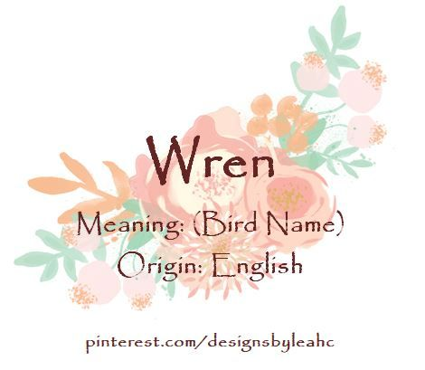 Unique Bird Names With Cool Meanings