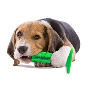 Nosii 犬用歯ブラシ 歯磨き棒 噛むおもちゃ 歯クリーニングブラシバー 歯磨き 口腔ケア 歯石 歯垢 歯石予防 シリコン製 ペット用品 ペット用品 ペット 歯のクリーニング