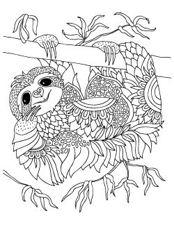 Cute Smiling Sloth Coloring Page By Keiti Coloring Pages Animal Coloring Pages Smiling Sloth