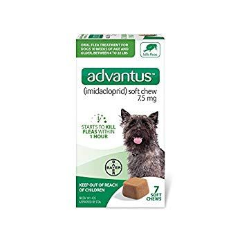 Advantus Flea Soft Chews For Small Dogs 4 22lbs Be Sure To Check Out This Awesome Product This Is An Affiliate Lin In 2020 Fleas Small Dogs Tick Control For Dogs