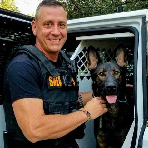 German Shepherd K9 Chris Paso County Florida Military Service Dogs K9 Police Dogs Police Dogs