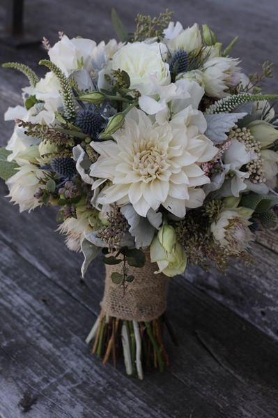 White Dahlia Blue Thistle White Veronica Seeded Eucalyptus And Dusty Miller Bouquet Weddingideas Wedding Bouquets Wedding Flowers Flower Arrangements