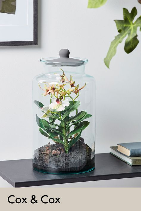 The perfect decorative piece to deliver an oriental interest to your space. Contained behind glass akin to the traditional cloche but with a simple black lid, our orchid comes complete with small, rich green leaves and exquisite blush details to each flower. #fauxflowers #orchid #oriental
