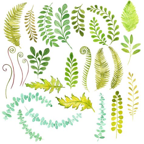 Watercolor Foliage by Tangle's Treasures on Creative Market // art // drawing // inspiration // illustration // artsy // sketch