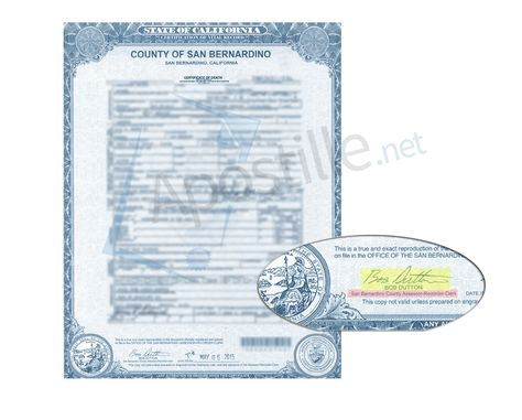 complete apostille of a live birth certificate, County of San Diego ...