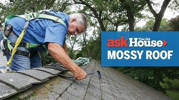 Best Way To Remove Moss From Roof In 2020 Roof Cleaning Old Houses Roof