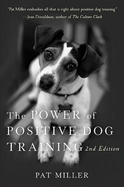 A Renowned Dog Trainer Gives You The Positive Training Tools You