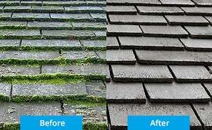 Roof Moss Cleaner Outdoor Cleaning Get Rid Of Mold Cleaning Vinyl Siding