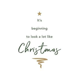 Christmas Is My Favourite Time Of The Year I Love To Have My Family Around Me And Sharing The Love Of Giving I Am Fortuna Xmas Quotes Work Quotes My Love