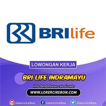 Lowongan Kerja Bank Bri Life Indramayu Di 2020 Asuransi