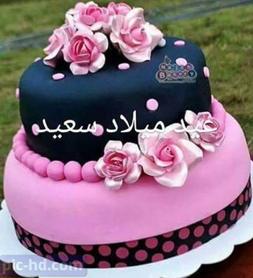 صور تورتة عيد ميلاد أجمل خلفيات تورتة مكتوب عليها كل سنة وانت طيب Happy Birthday Cupcakes Birthday Cupcakes Birthday